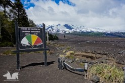 Conguillío National Park. Lucky for us, eruption risk was low.