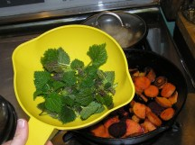 Steam stinging nettle on top of your veggie stir fry or mix in as you would spinach.