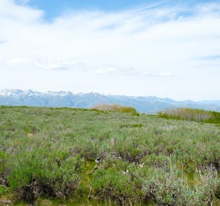 Wolf Creek Ranch Lot 22