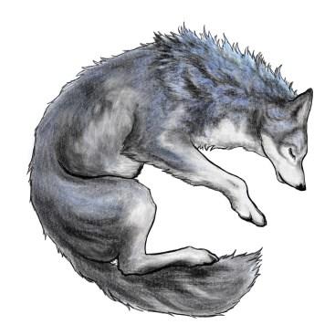 WGNE-Wolf_1250x1250