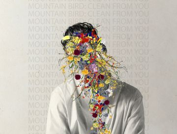 clean from you - mountain bird - Sweden - indie music - indie pop - new music - music blog - wolf in a suit - wolfinasuit - wolf in a suit blog - wolf in a suit music blog
