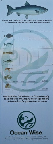 Red Fish Blue Fish Oceanwise poster