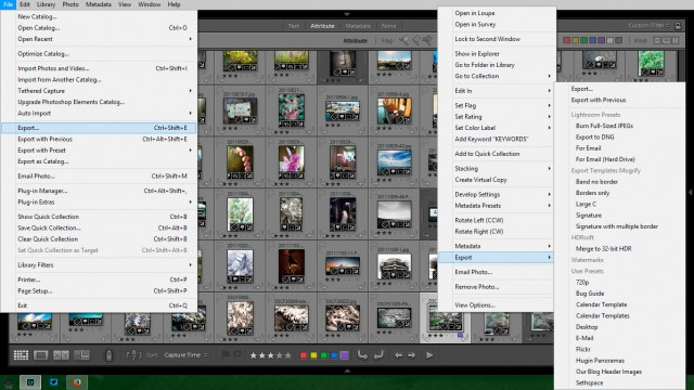 Exports from Lightroom