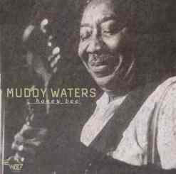 120893 Muddy Waters Honey Bee