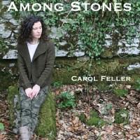 Among Stones - Carol Feller