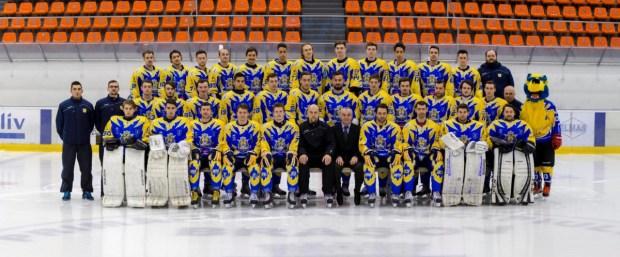 2015-2016 corona team