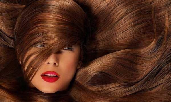 Φυσική Θεραπεία για να Μακρύνετε τα Μαλλιά σας Γρήγορα