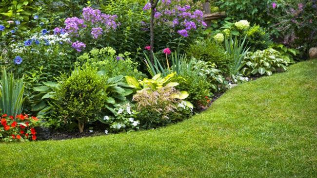 Tips for an Incredible Looking Garden