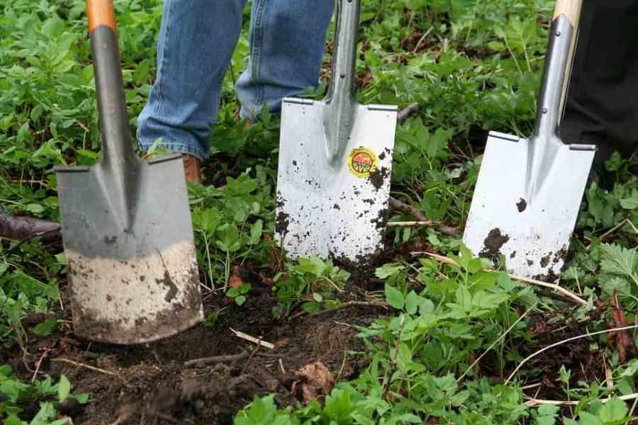 gardening-331986_960_720