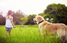 טיול עם בעלי החיים שלנו בקיץ