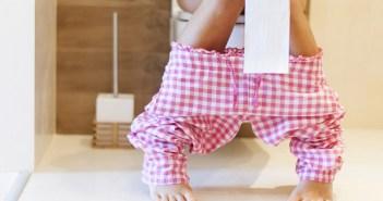 סקר הרגלי השימוש בשירותים
