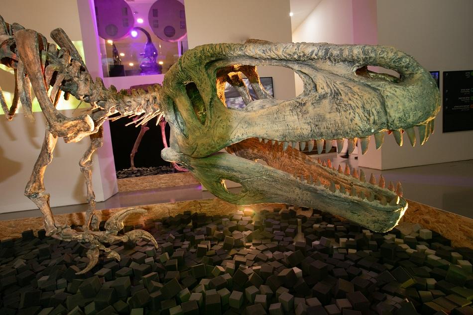 דינוזאורים – ענקי הפטגוניה ב'פארק קרסו למדע'