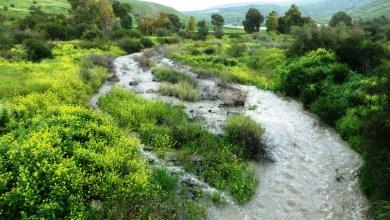 Photo of מסלול קסום במקורות המים-יהודייה, מג'רסה וזאכי בשביל סובב הכינרת