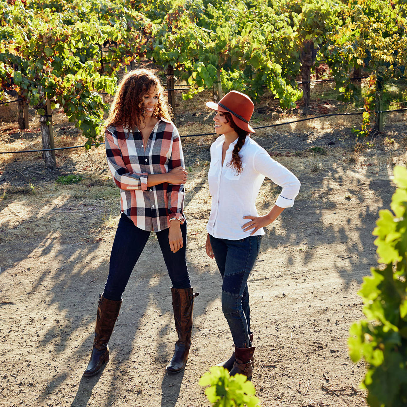McBride Sisters Collection (Wine)