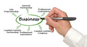 Choosing Between LLC, Sole Proprietorship or Corporation