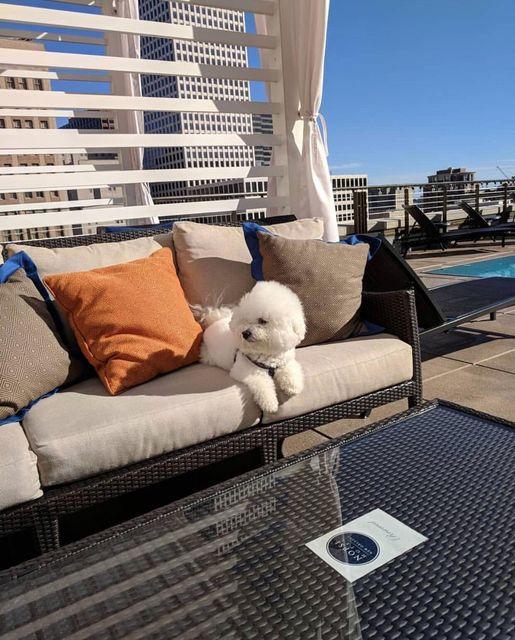 NOPSI Hotel – One of top 10 luxury hotels in US