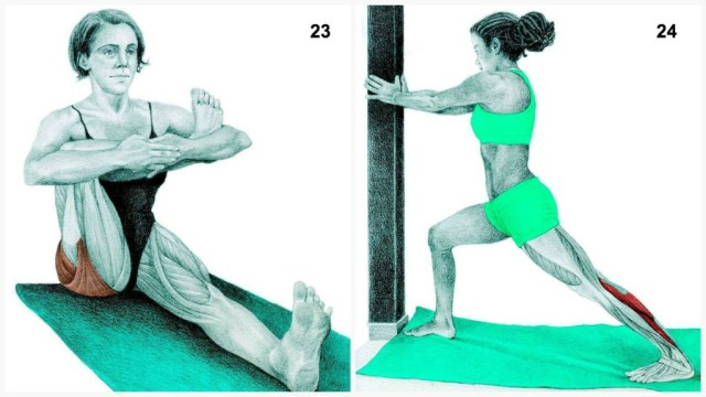 The-Art-of-Stretching-15