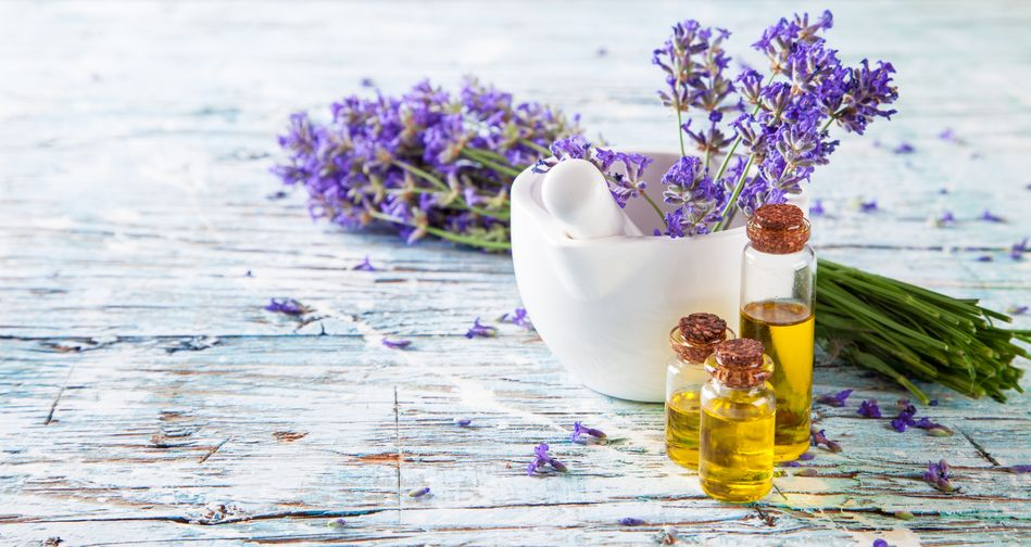 Image Result For What Is Tea Tree Essential Oil Used For