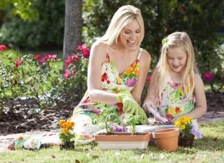 Take Up Gardening