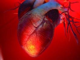 Inorganic phosphate in Diet Elevates the Heart Risk