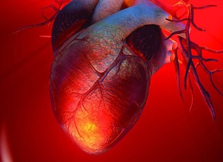 Inorganic phosphate in Diet Elevates the Heart Risk