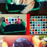 cat sofa crocheting