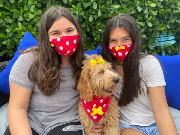 Dog Bandana and Matching Owner Face Mask Minnie Mouse