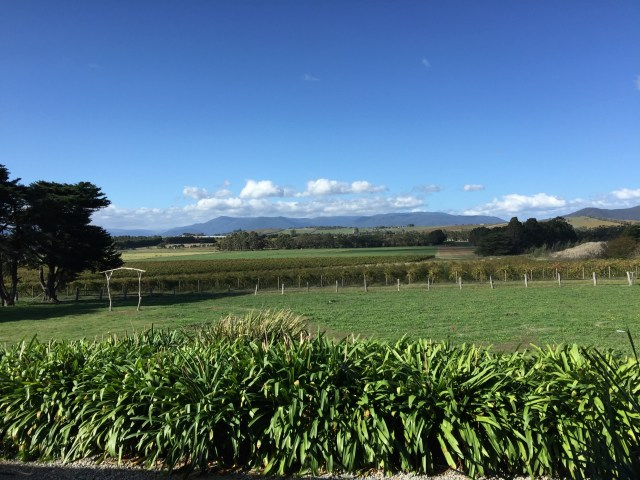 Commanding views of the Yarra Valley