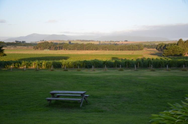 Fantastic views over the Yarra Valley