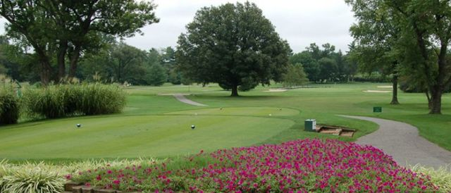 tee boxes womens golf