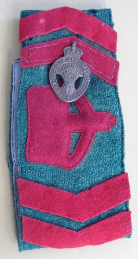 Dorothy Brown's Women's Land Army Armband and Badge