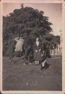 Joan Birchall Archive Photo 29
