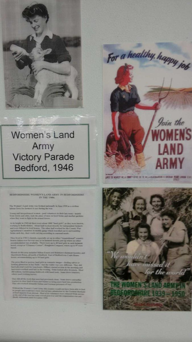 Bedford Central Library WLA Display