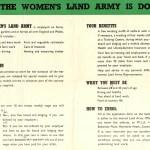 Be in the Winning Team: WLA WW2 Leaflet c.1940s