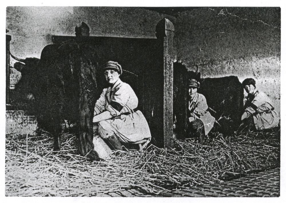 Land Girls on the Sandringham Estate at the milking pail