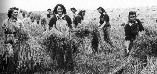 Stooking the sheaves in Buckinghamshire 2, summer 1944