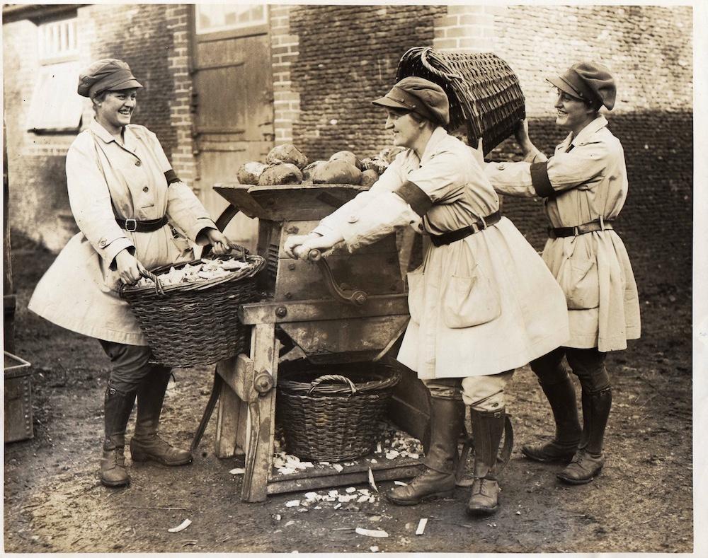 Turnip chopping at Sandringham