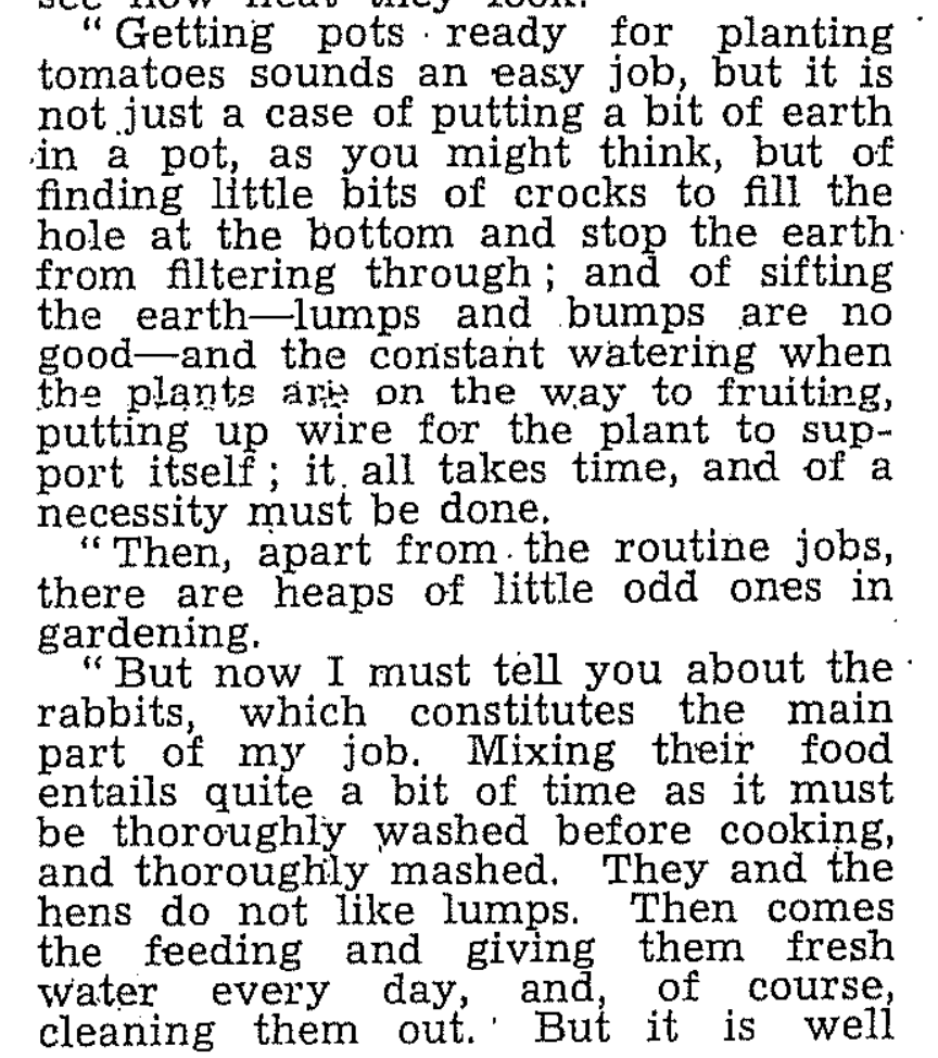 Stella Hallums writes on her vegetable gardening days at Lelant, for the Cornwall WLA monthly newsletter in October 1942.