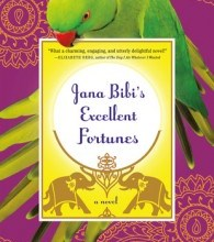 Jana Bibi's Excellent Fortunes by Betsy Woodman