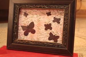 butterflyframe