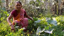 women sowing change