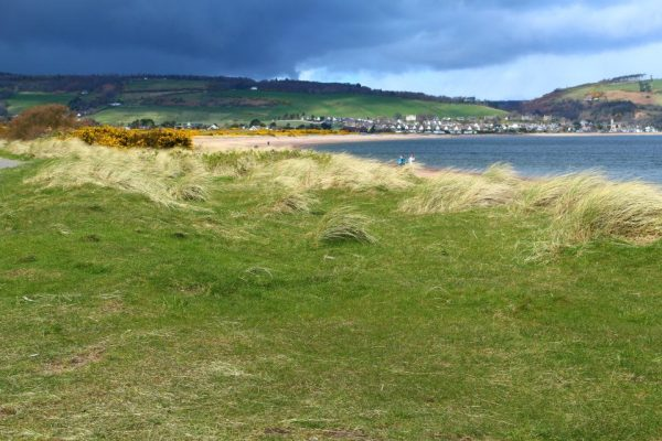The Chanonry Point famous for Dolphin Watch...