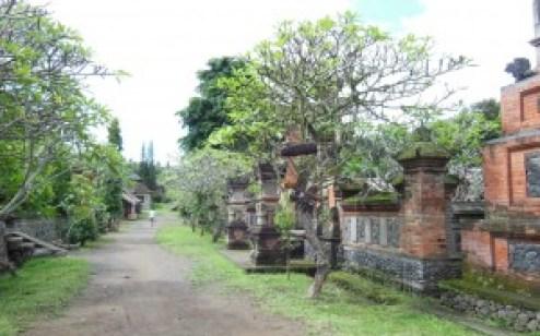 Tenganan Village - Central Pathway