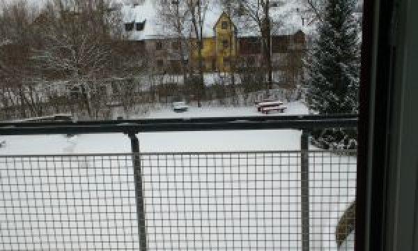 Bavarian winter from my balcony.