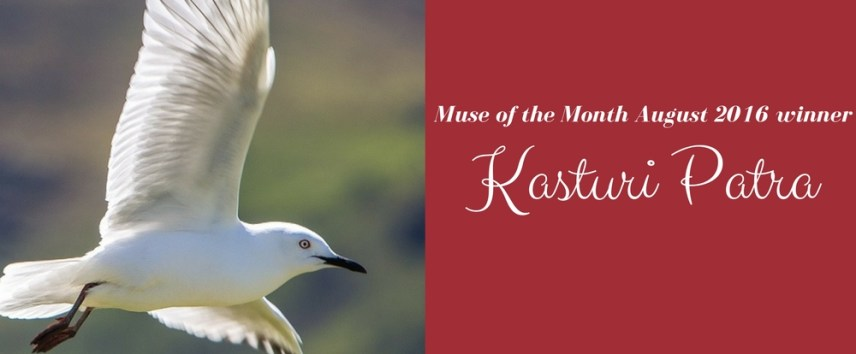 Muse of the Month August 2016 winner 3