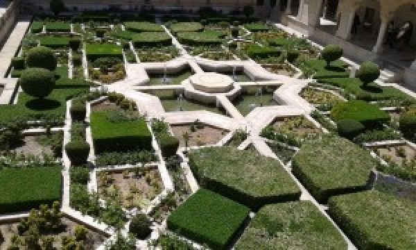 Splendid labyrinth of cultivated nature - inside Amber Fort