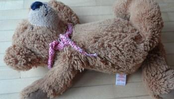 teddy-bear-sad-abortion