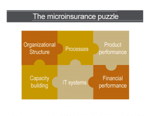 What does it take to offer microinsurance?