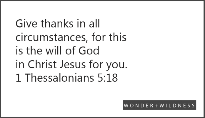 cw-habit-thankfulness-verses