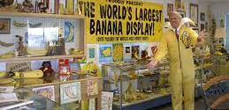 Banana club and museum, Altadena